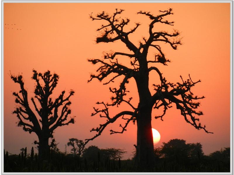 Coucher de soleil au Sénégal