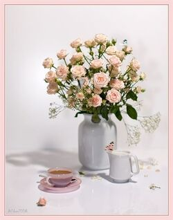 Bonjour Bonne fin de semaine