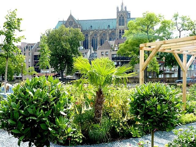 Metz un jardin en chantier 22 Marc de Metz 31 07 2012