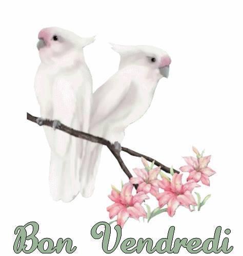 BON  VENDREDI  2