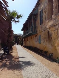 6 - Sénégal  5