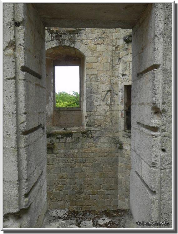 Le château de Rauzan