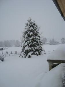 neige-et-Gites-071.JPG
