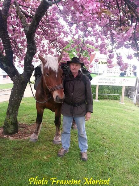 Un voyageur et son cheval...