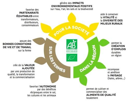 Promotion du Bio, une infographie explicite