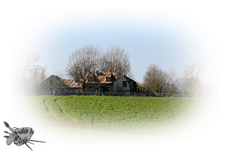 Campagne 1
