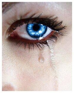 ♫ Quelques larmes ♫