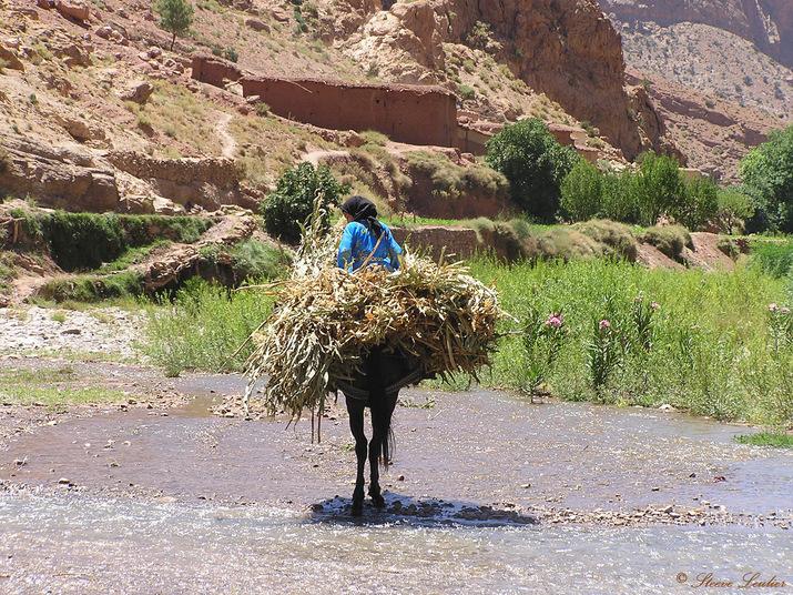 Vie dans le Haut Atlas, Maroc