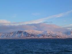 1er janvier Reykjavík