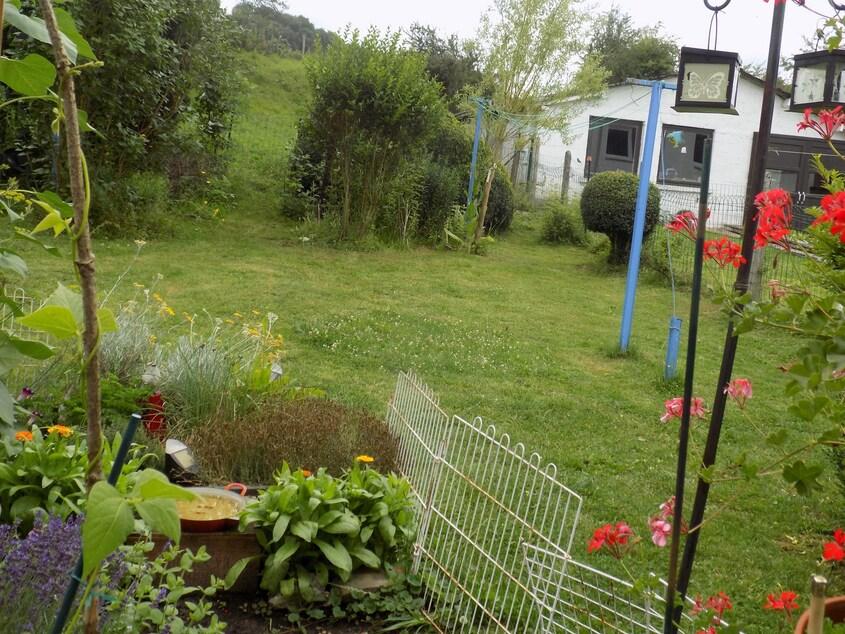 Les abeilles au jardin