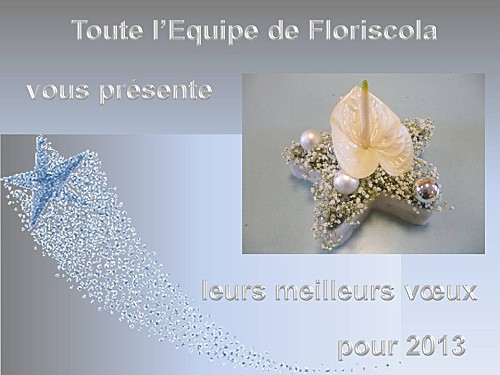 2013_01-bonne-annee.JPG