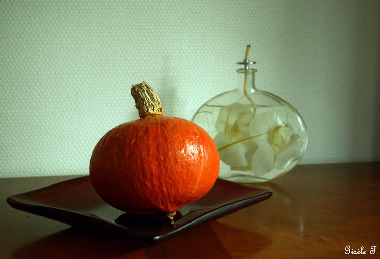 partage photos octobre