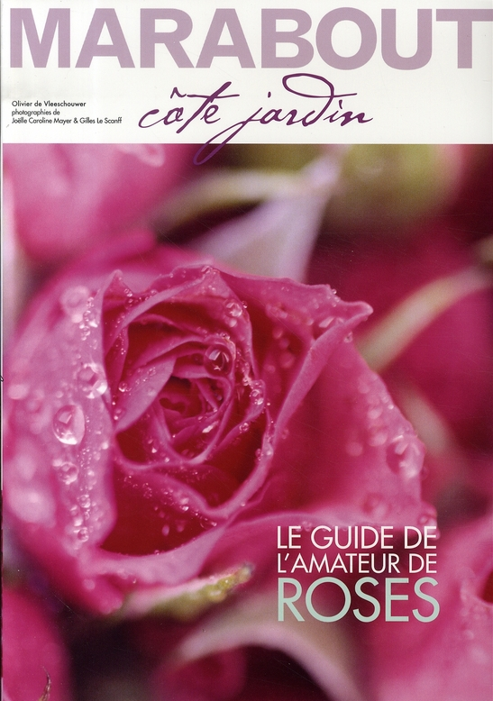 les livres sur les roses au nom de la rose. Black Bedroom Furniture Sets. Home Design Ideas