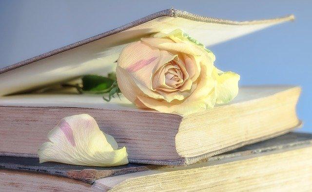 Bilan lecture du mois de mai, lecture voyages sur un mot roman avis littéraire chronique livre