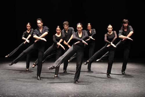 dance ballet flamenco andalous