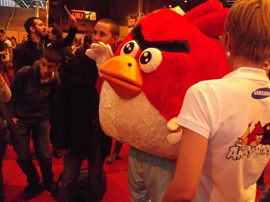 angry birds (2)