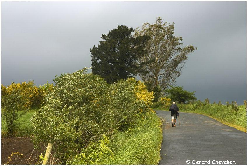 Camino para Fisterra # 12 - Pêlerin dans la campagne Galicienne.