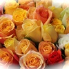 Fleur Bouquet 8.jpg