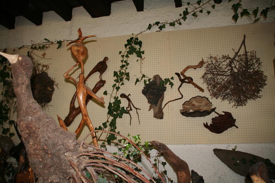Le musée des mille et une racines (suite)