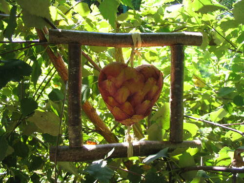 Un coeur de roses