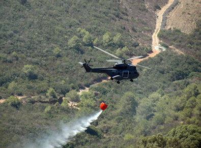 Lutte contre les incendies de forêts, le Maroc premier en Méditerranée