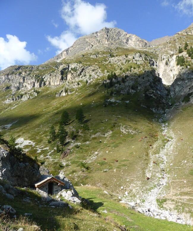 En Haute-Maurienne N°3 : le vallon d'Etache