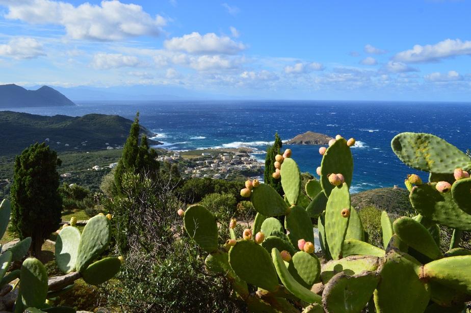 Cap Corse. Le village de Cannelle