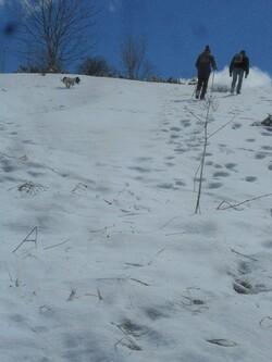 Les neiges de Kopitoto