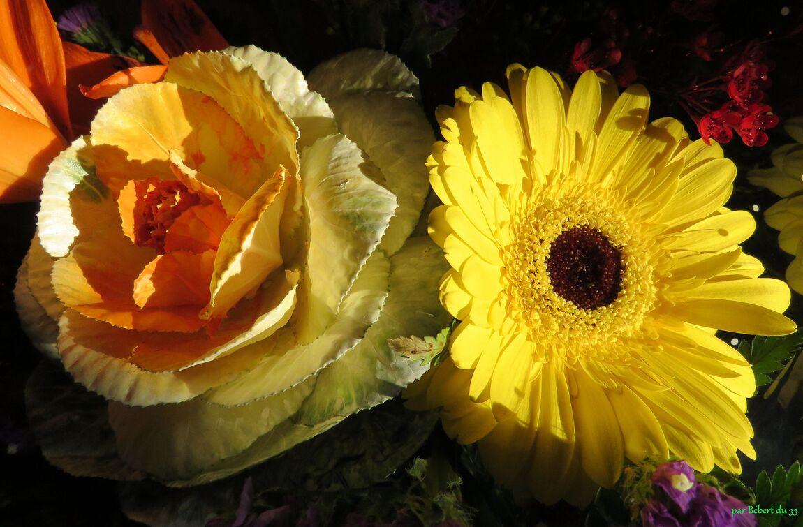 un bouquet pour Danièle