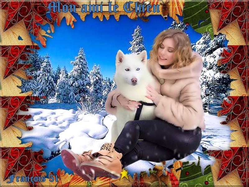Mon ami le chien pour fée Capucine ***