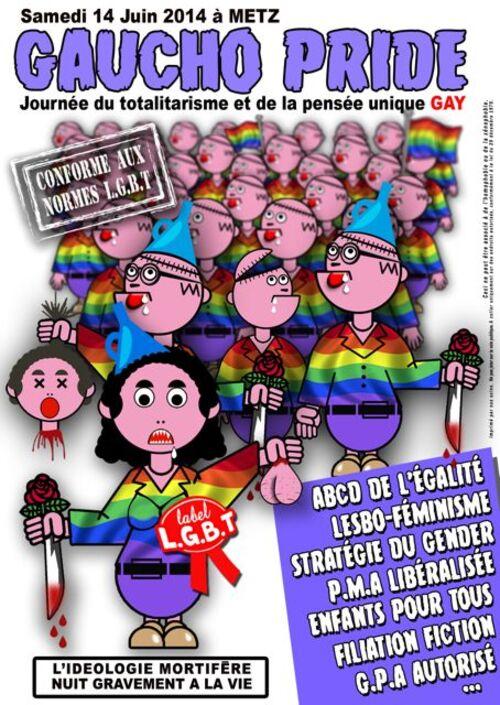 Gay pride du 14 juin 2014 à Metz