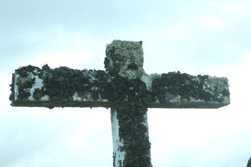 Crist 15