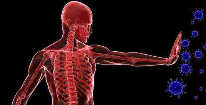 Une étude montre que jeûner pendant 3 jours peut régénérer votre système immunitaire