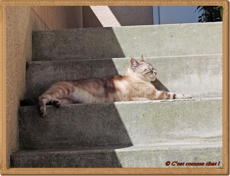 Bronzette dans l'escalier - 1