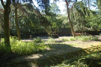 Zoo Duisburg 2012 639