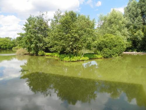 Le Parc des Oiseaux à Villars-les-Dombes ( 1 )