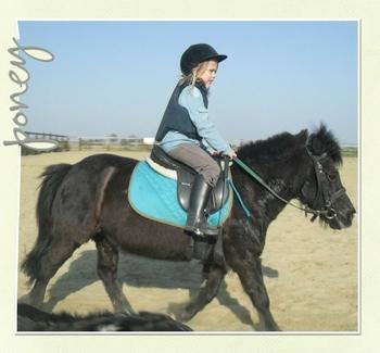 2011-03- poney - Copie - Copie - Copie