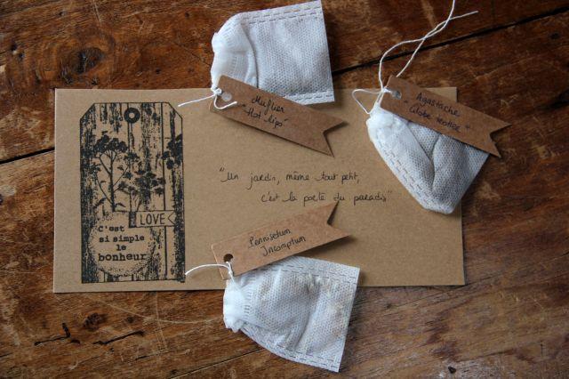 Seeds of Love 2018 : du bonheur dans la boîte aux lettres ! (8)