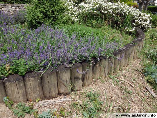 copeaux de bois jardin