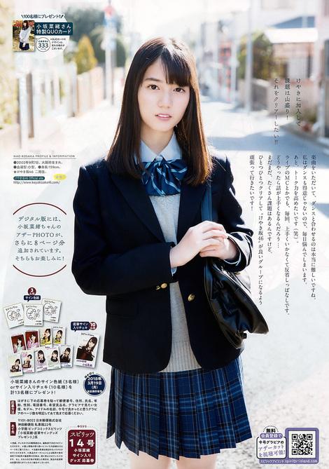 Magazine : ( [Big Comic Spirits] - 2018 / N°14 - Nao Kosaka Centric )