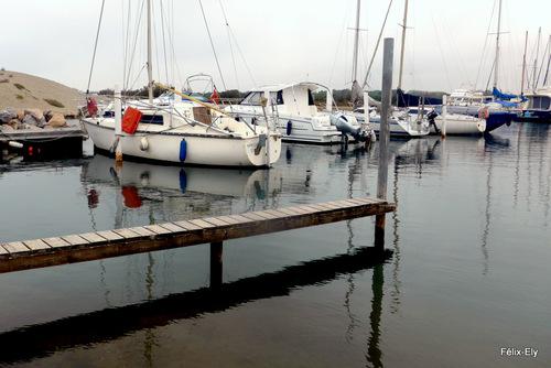 Promenade à Sainte Marie la Mer ... (1)