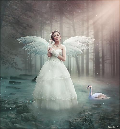 Un Ange Blanc (Photomontage)