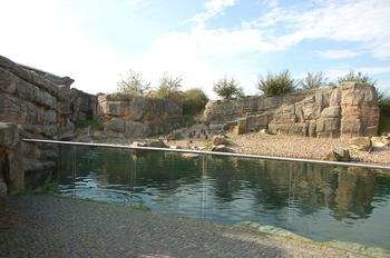 dierenpark emmen d50 153
