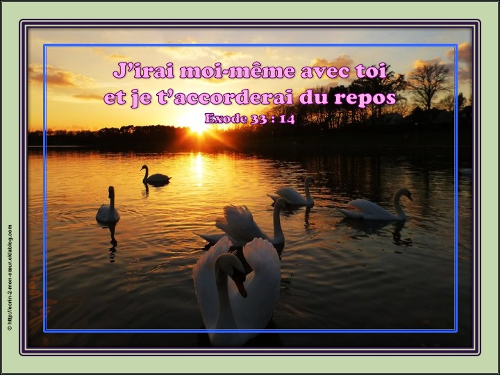 Dans la présence et le repos de Dieu - Exode 33 : 14