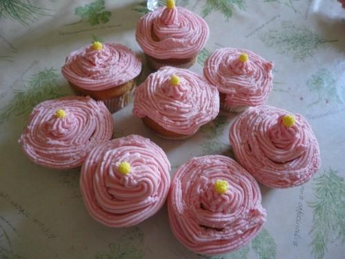 cupcakes3105111.jpg