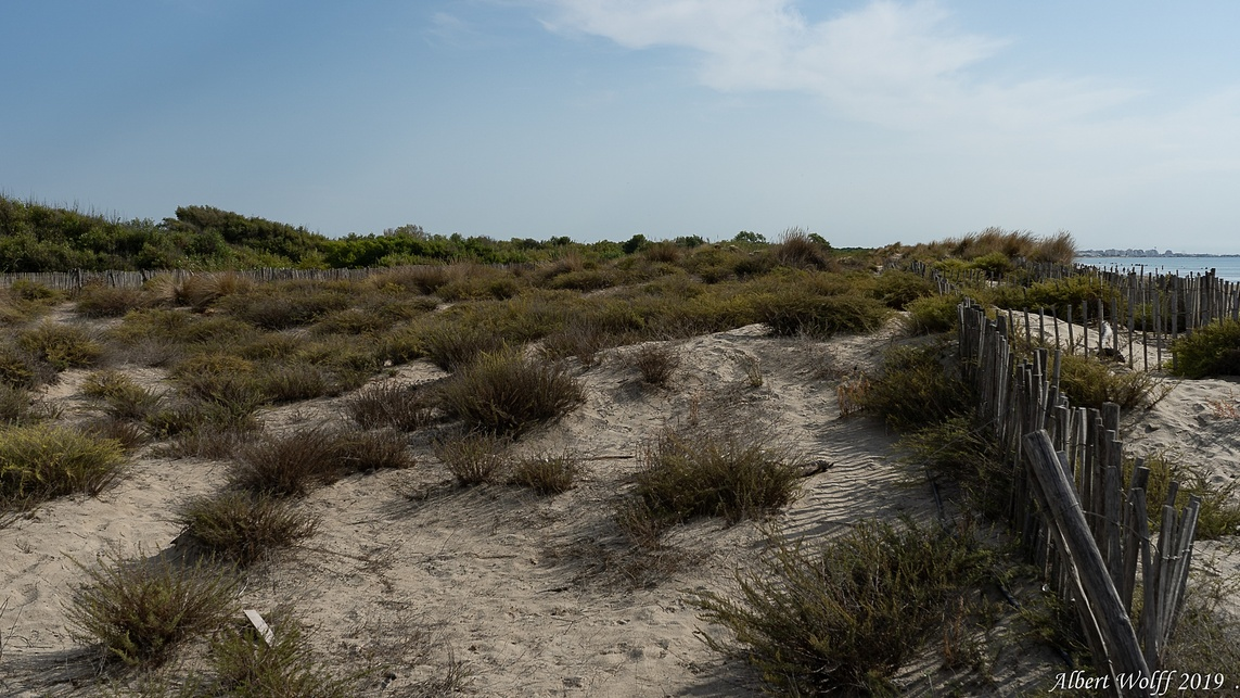 Dans le travers du Petit Travers