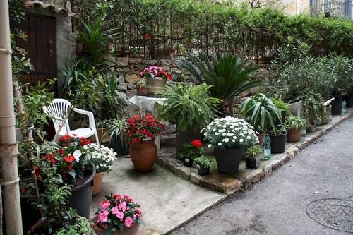 Un joli parterre de fleurs dans l'une des petites voies pentues de Chateauneuf-Grasse