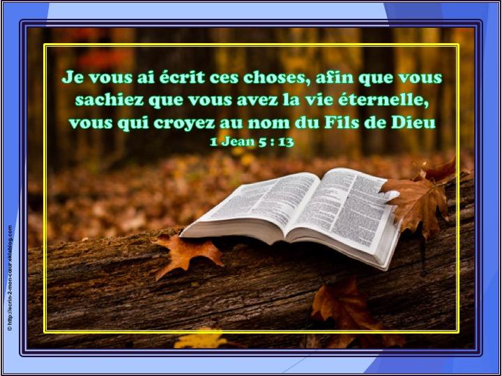 Vous avez la vie éternelle - 1 Jean 5 : 13