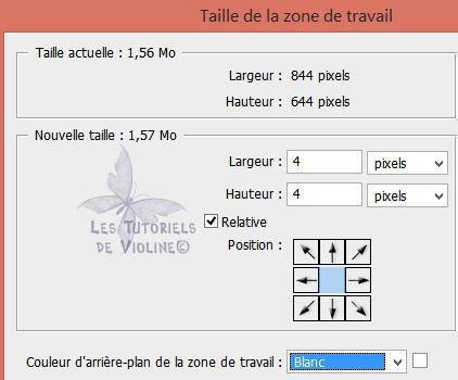 https://s3.archive-host.com/membres/up/502828651/TutoPersoToshop/Dans_les_nuages/Dans_les_nuages_Etape_29.jpg
