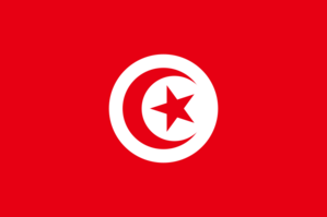 800px-Flag_of_Tunisia_svg-20-mars.png